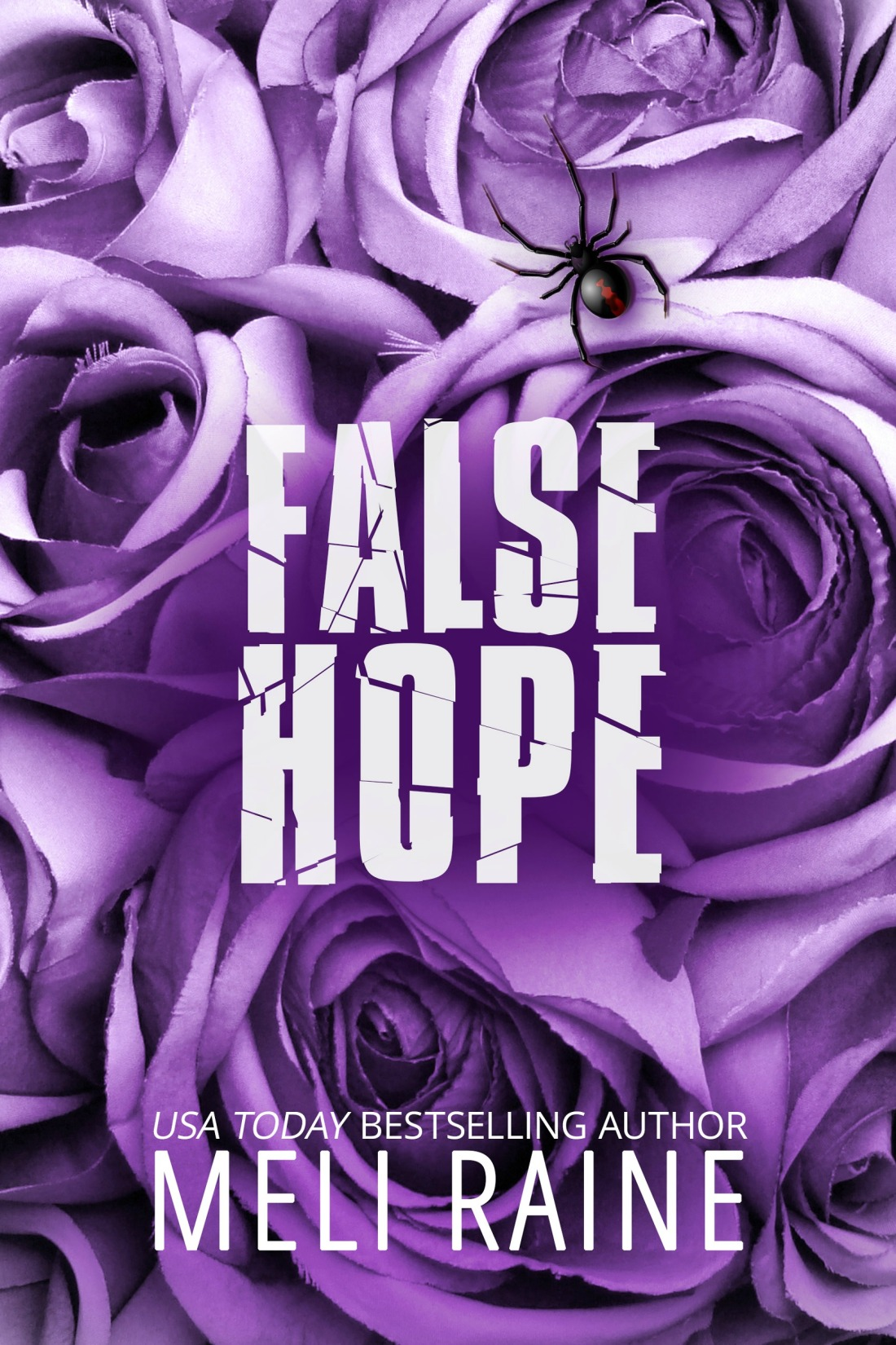 False Hope Ebook Cover